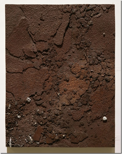 Boyle Family, Study of Rusting Metal Plate, 2001-2