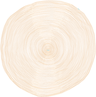 web_tree_rings copy