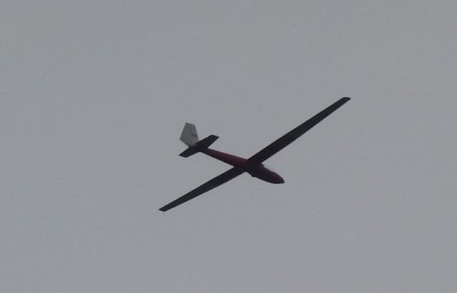 DSC02400 (2)