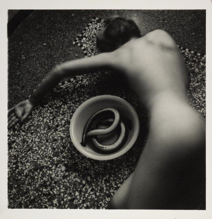 Francesca woodman snakes.png